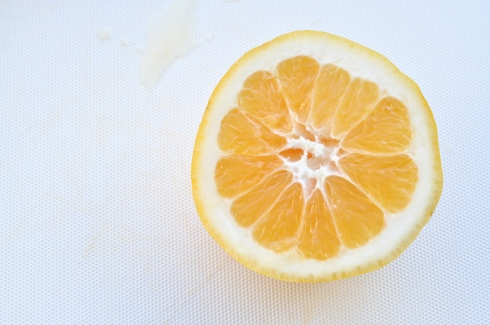 half a Meyer lemon