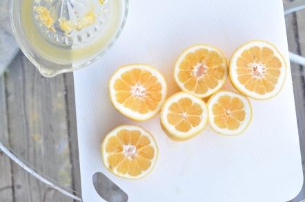 squeezing lemonade
