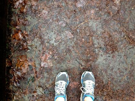 Running sneakers: onward and upward