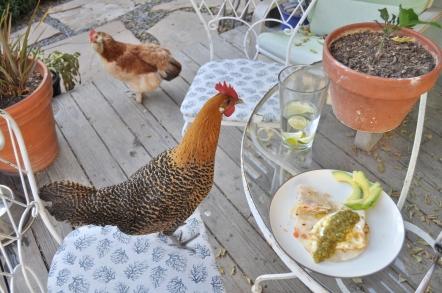 beggar chicken